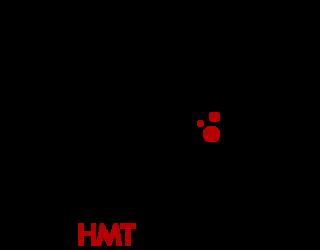 HMT Center
